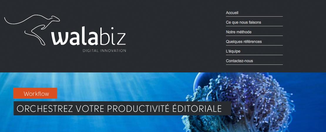 WALABIZ, un outil de workflow pour modéliser vos flux de travaux